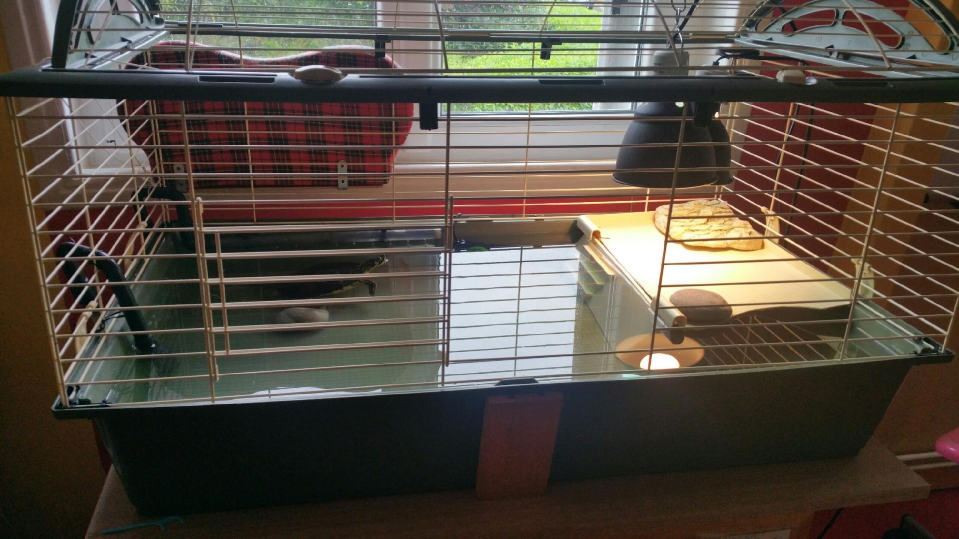 aquaterrarium pour tortue d 39 eau. Black Bedroom Furniture Sets. Home Design Ideas