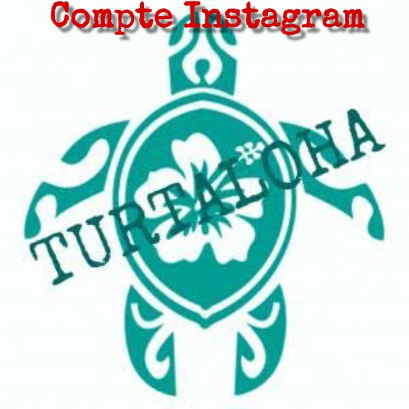 Turtaloha Instagram
